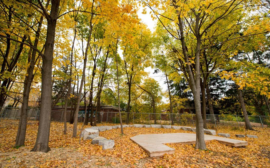 School natural playground