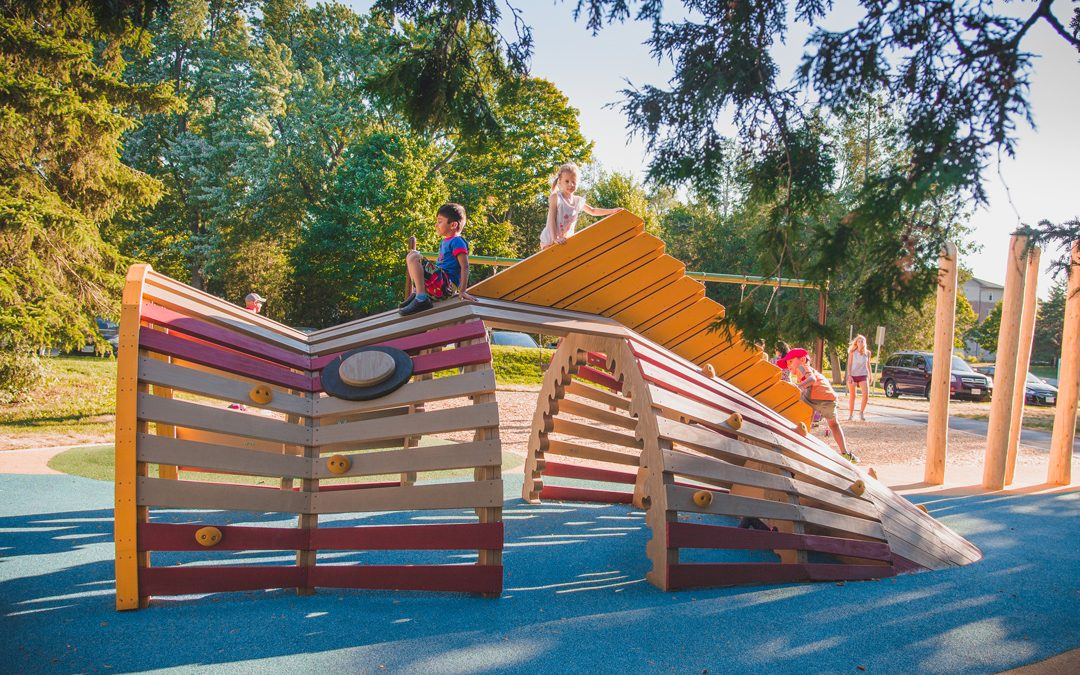 accessible playground natural sculpture canadian bass fish play