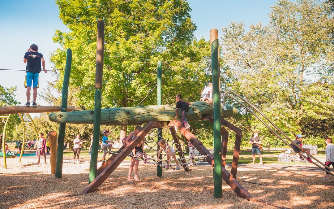 water strider animal sculpture playground canadian natural