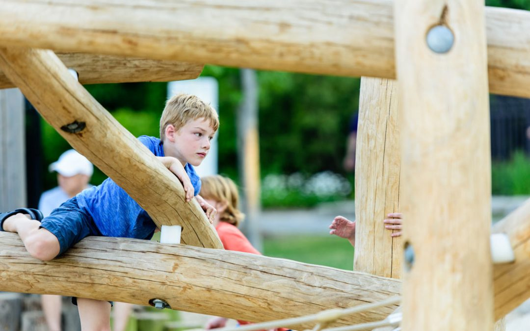 wood log jam structure play