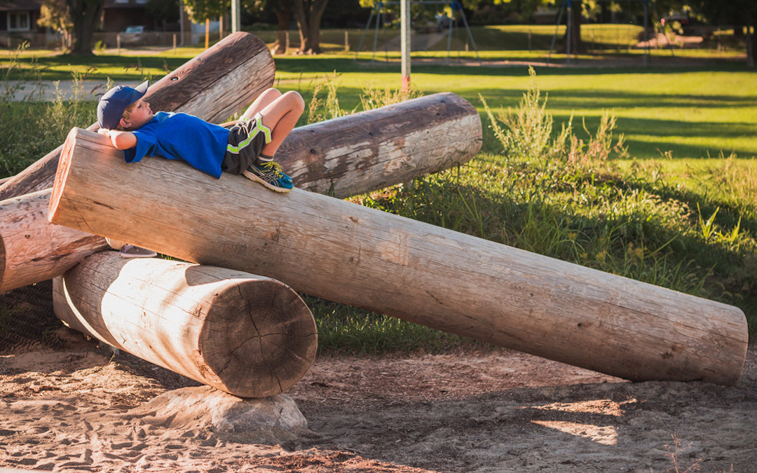 natural fallen log playspace playground