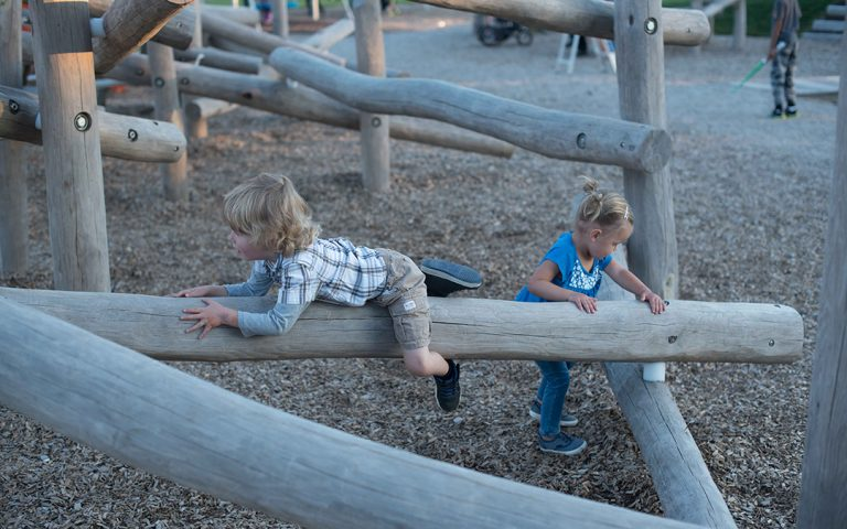 Mitchell Park natural log climber playground