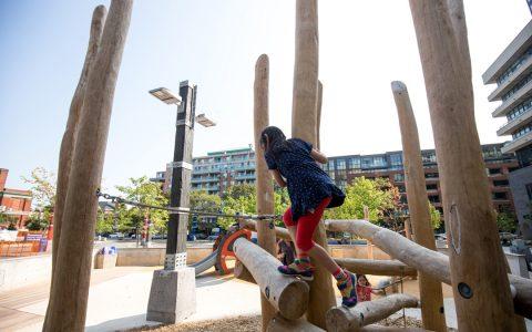 lisgar park playground logs