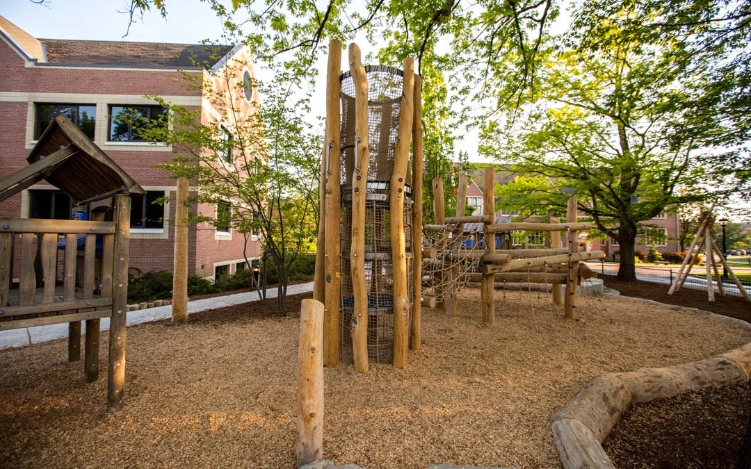 robinia log playground