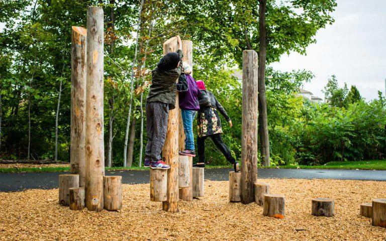 log playground equipment