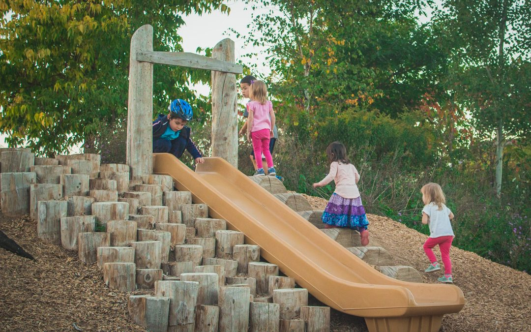 hill slide playground natural