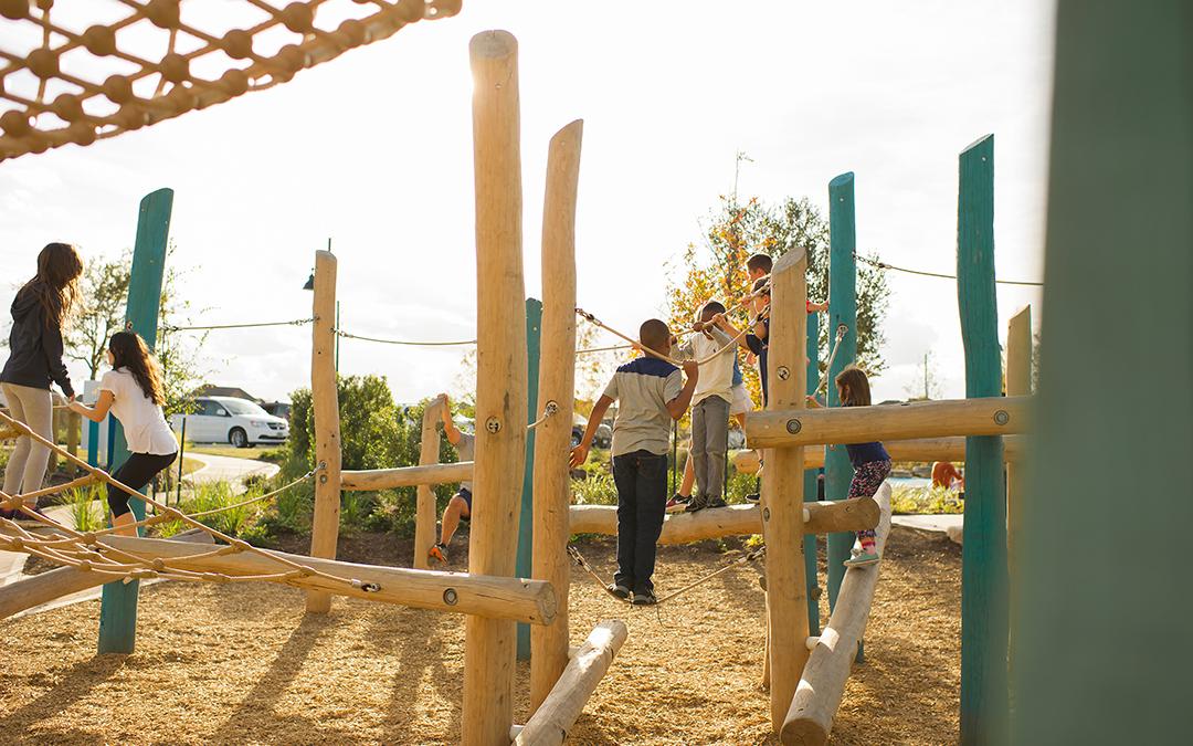 log and rope playground