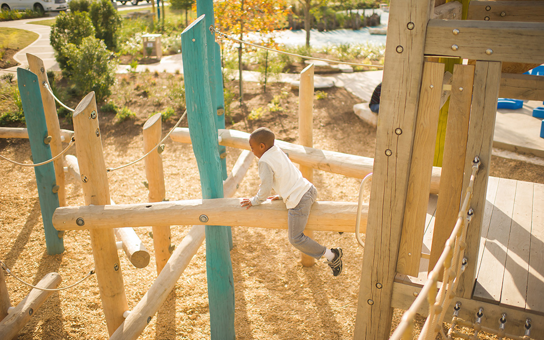 Robinia Log Climber Rope Playground Houston Texas