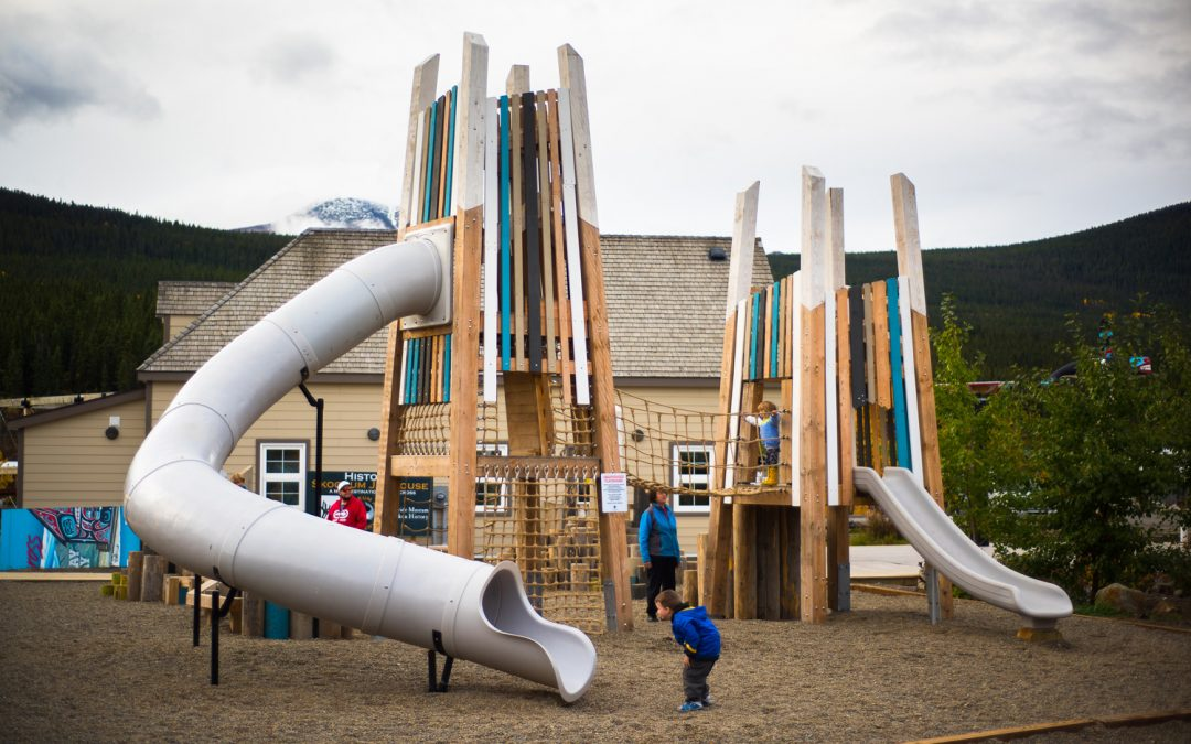 Timber towers epic playground