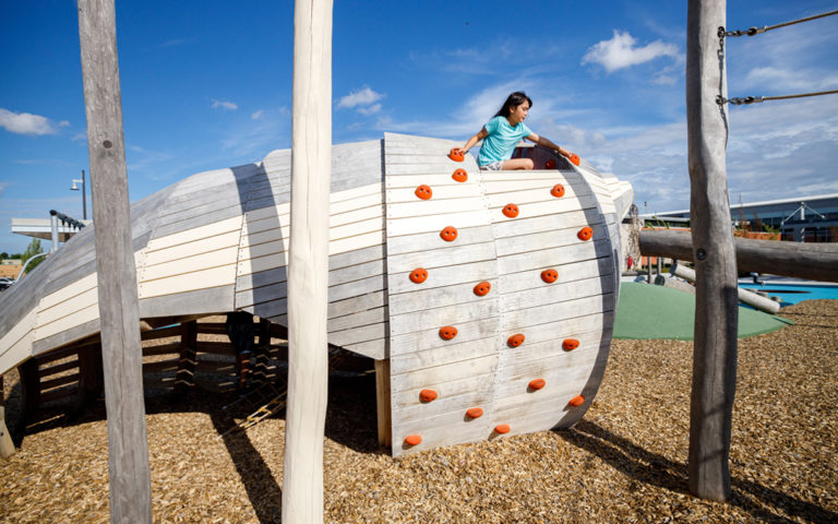 richmond hill natural wood playground conch shell climbing sculpture log posts