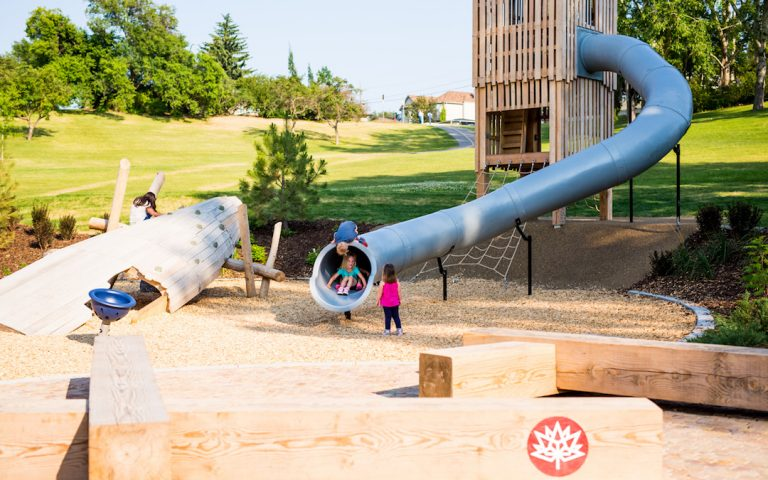 confederation calgary playground natural custom slide bunch sculpture
