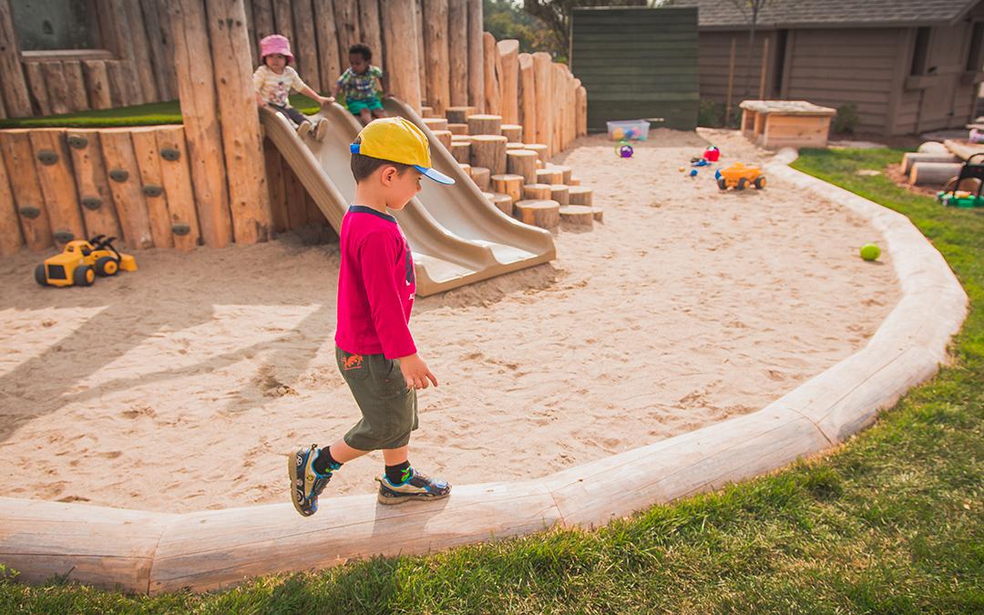 st bernadette school playground logs