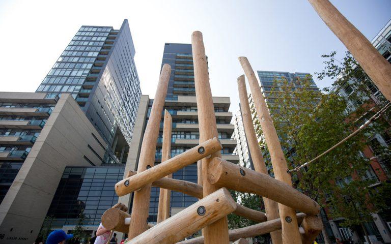 urban park log jam