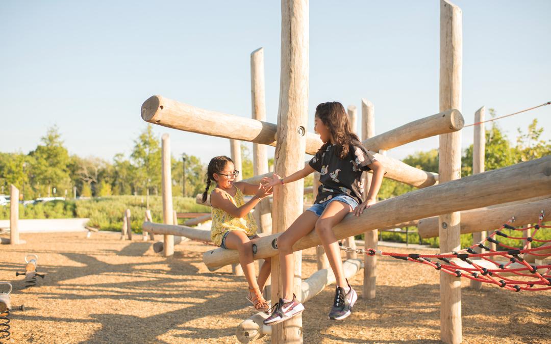 Bridgeland Dragonfly Park