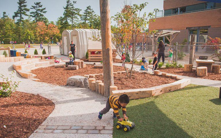 pilgrim woods school natural playground