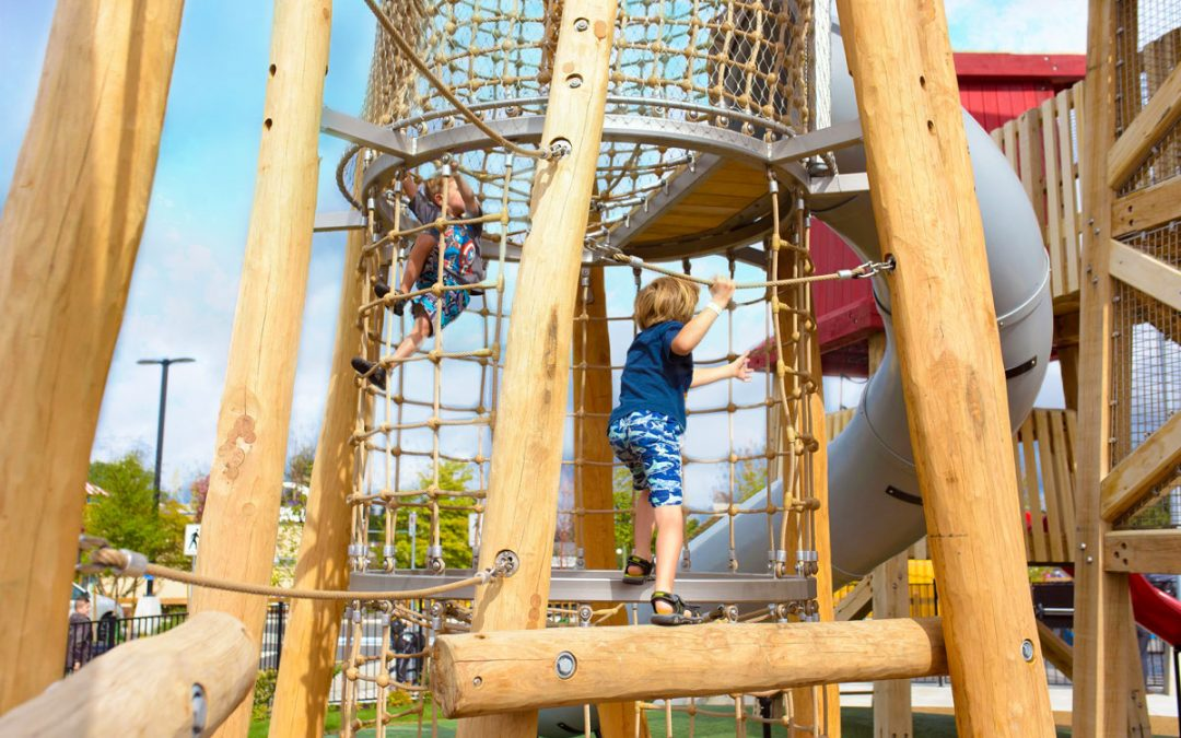 aldergrove recreation center log tower adventure play