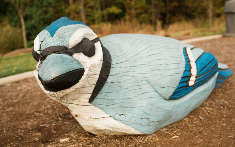 Joyner park natural playground North Carolina blue jay oak carving