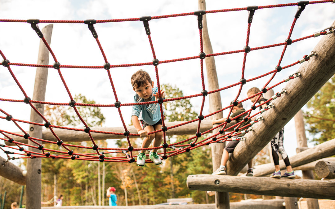 North Carolina natural playground log climber net social play high challenge