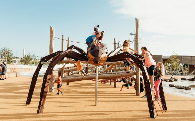 oklahoma natural wood playground wolf spider sculpture climber nets ropes water splash pad