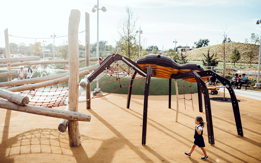 wolf spider at scissortail park in oklahoma city
