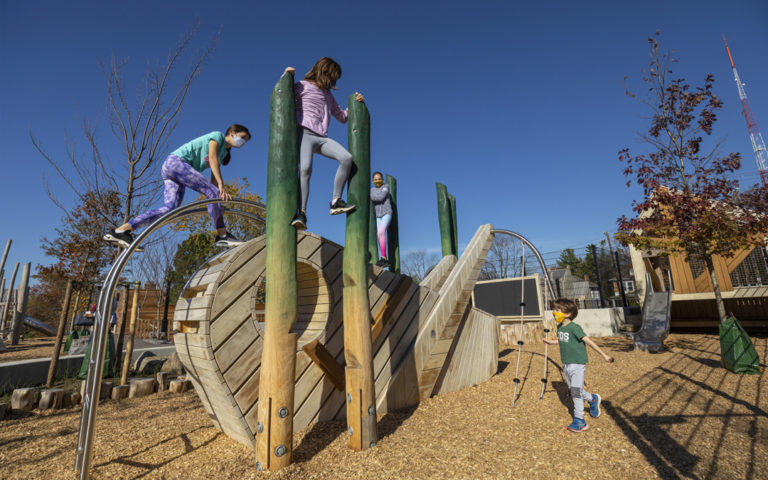 GDS private school junior area grasshopper sculpture climber