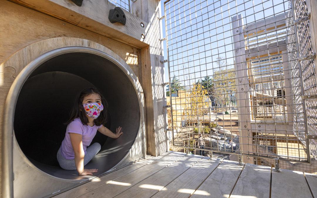 Georgetown Day School adventure natural wood towers tube slide windows view