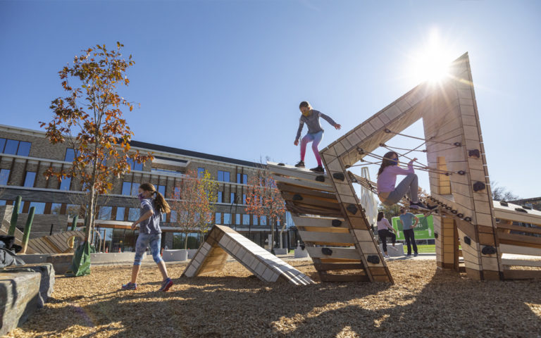 Georgetown Washington private school natural playground abstract wood sculpture