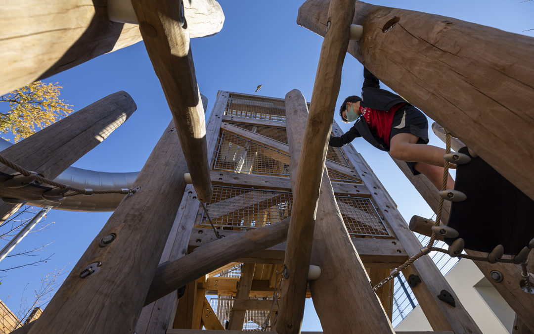 Private School Washington DC natural playground robinia log climber rubber sling towers