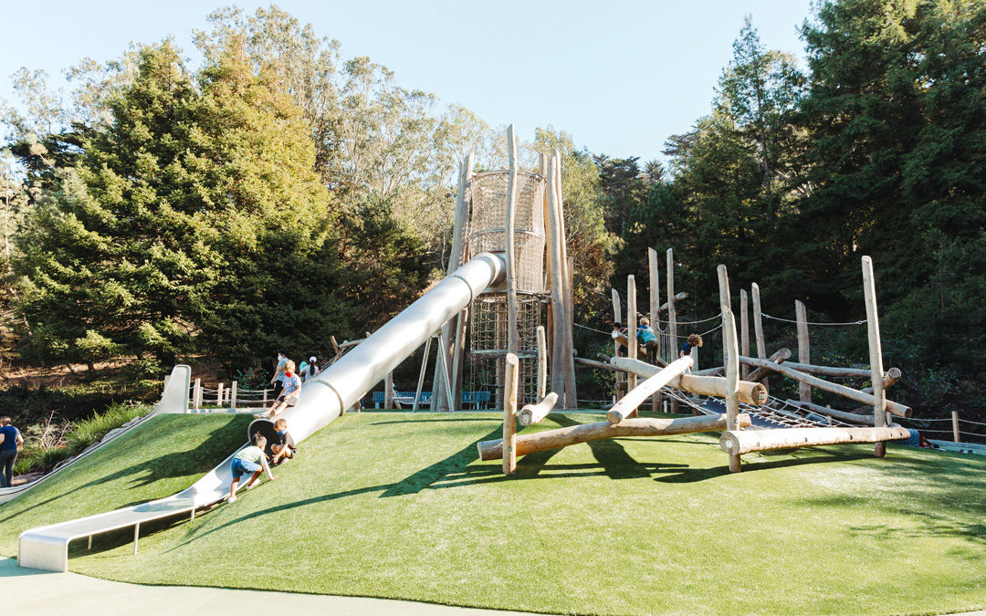 California natural playground artificial turf log rope climber tower tube slide