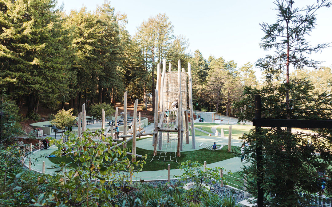 California San Francisco natural playground log tower climber high challenge