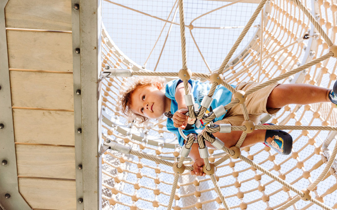 Redwood Grove natural wood playground robinia log tower climbing