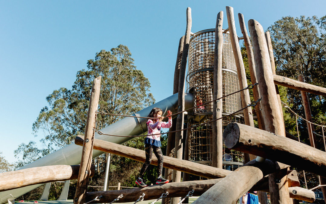 Redwood Grove park playground natural log tower climbing adventure