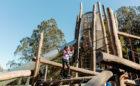 Redwood Grove park playground natural log tower climbing adventure