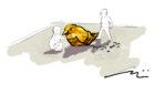 irvine california natural wood playground warbler sketch design