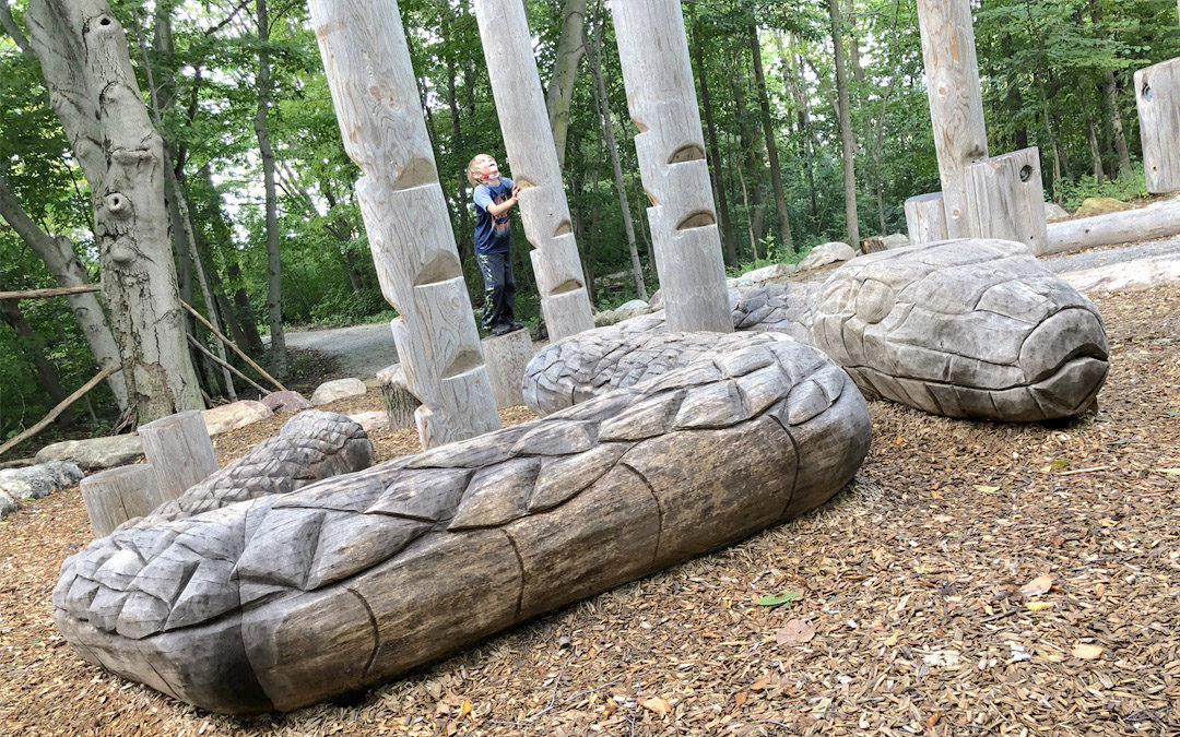 natural playground forest trees wood carved snake sculpture log steppers