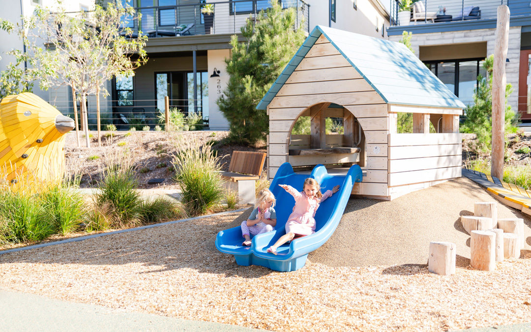 Irvine California natural wood playground accoya hut slide robinia log steppers
