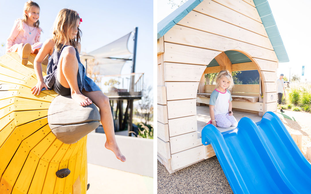 natural wood playground Irvine California custom accoya bird sculpture birdhouse hut