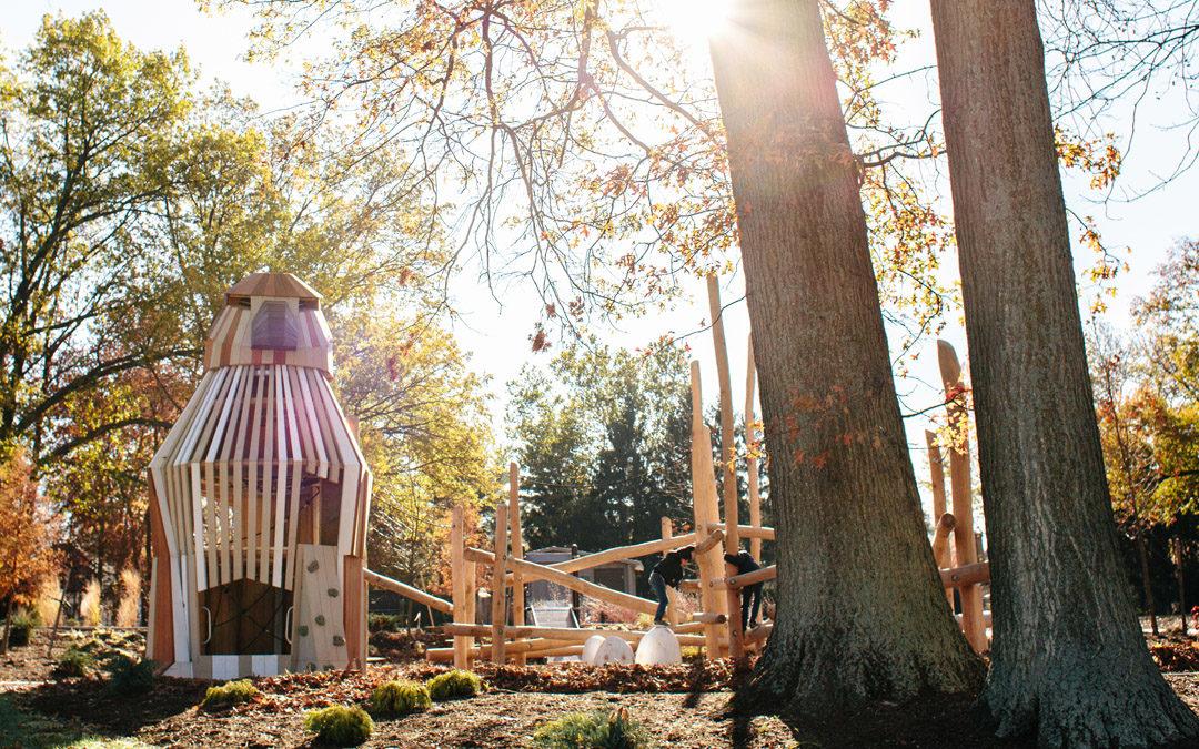 custom wood hawk tower sculpture natural playground accoya