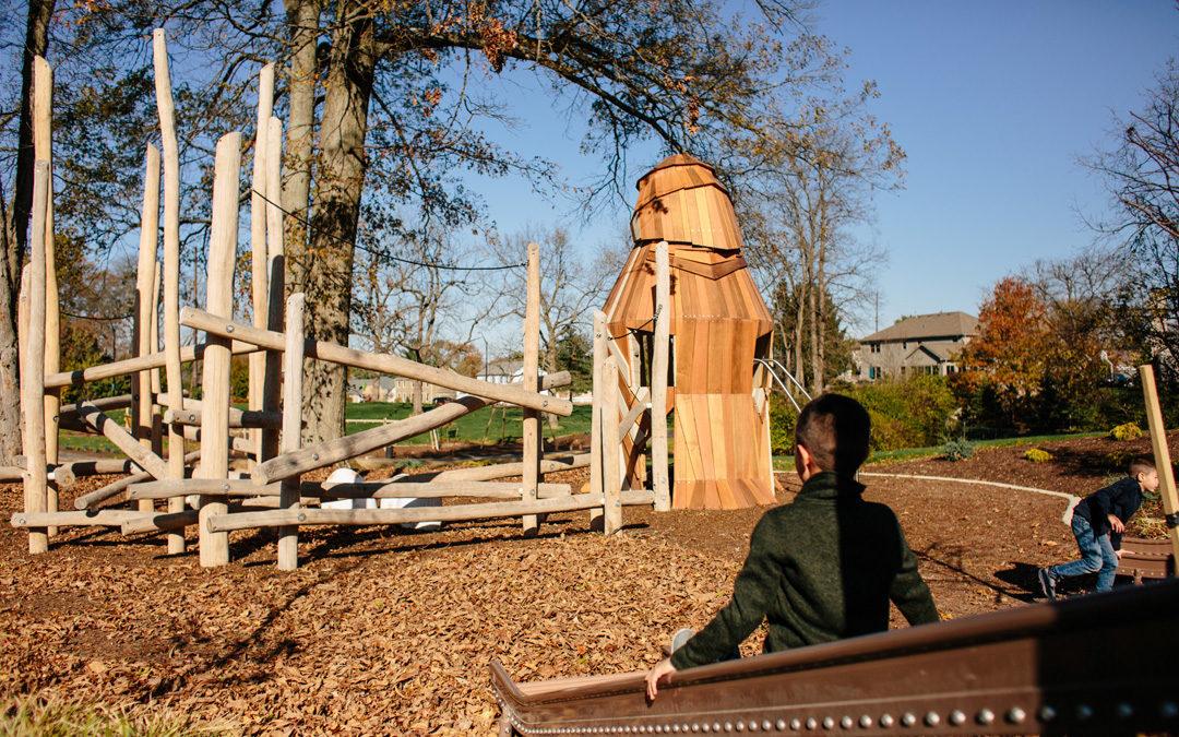 Johnston McVay park natural playground robinia log climber hawk tower roller slide