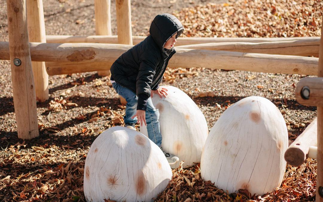 Johnston McVay park oak log birds egg carvings log climber