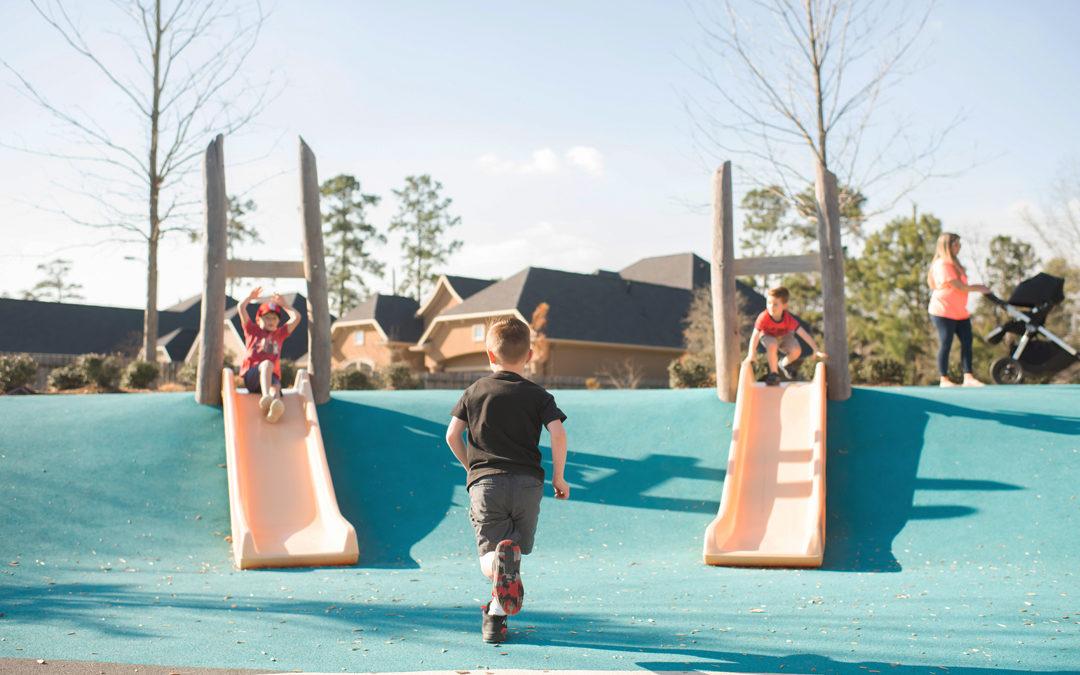 houston texas natural playground double embankment slides robinia timber logs