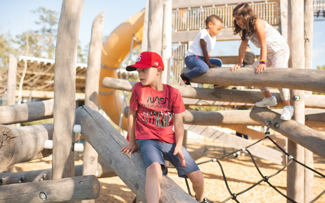 natural wood playground robinia log timber climbers towers tube slide ropes nets