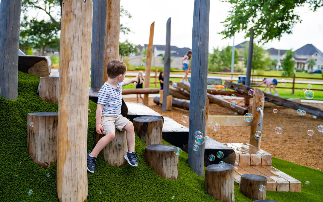 texas natural wood playground hill play robinia log steppers transfer system accessible