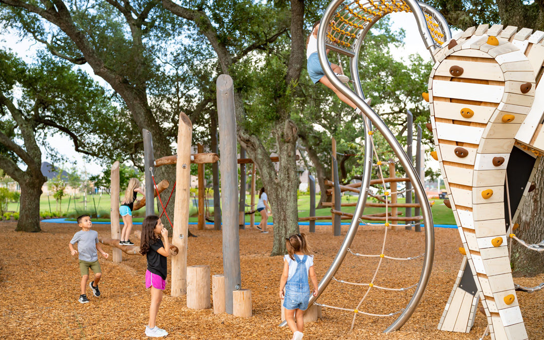 tomball texas natural wood playground sculptural horse tail climber ropes log steppers